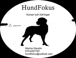 HundFokus